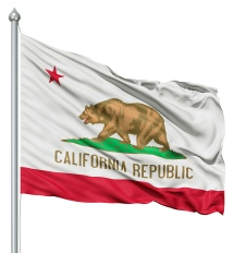 California - United States of America Flag Site
