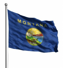 Montana United States of America Flag Site